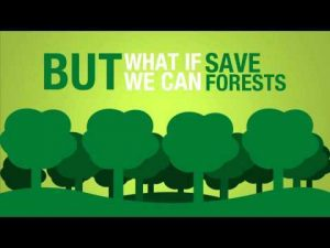eco insulation save our trees