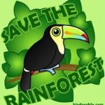 eco-insulation save-our-forests