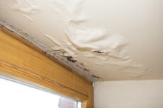 Ways to Reduce Ceiling Mould and Condensation